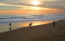 Beaches and Coastlines | Categories | Phillip Island