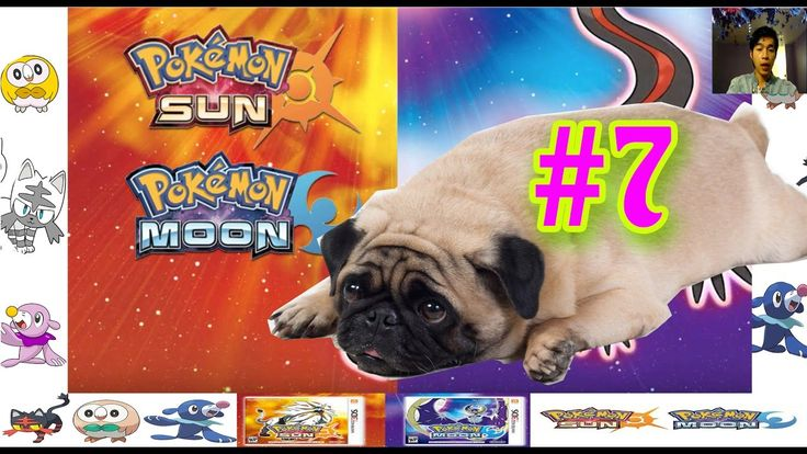 """""""Who is the strongest"""" 