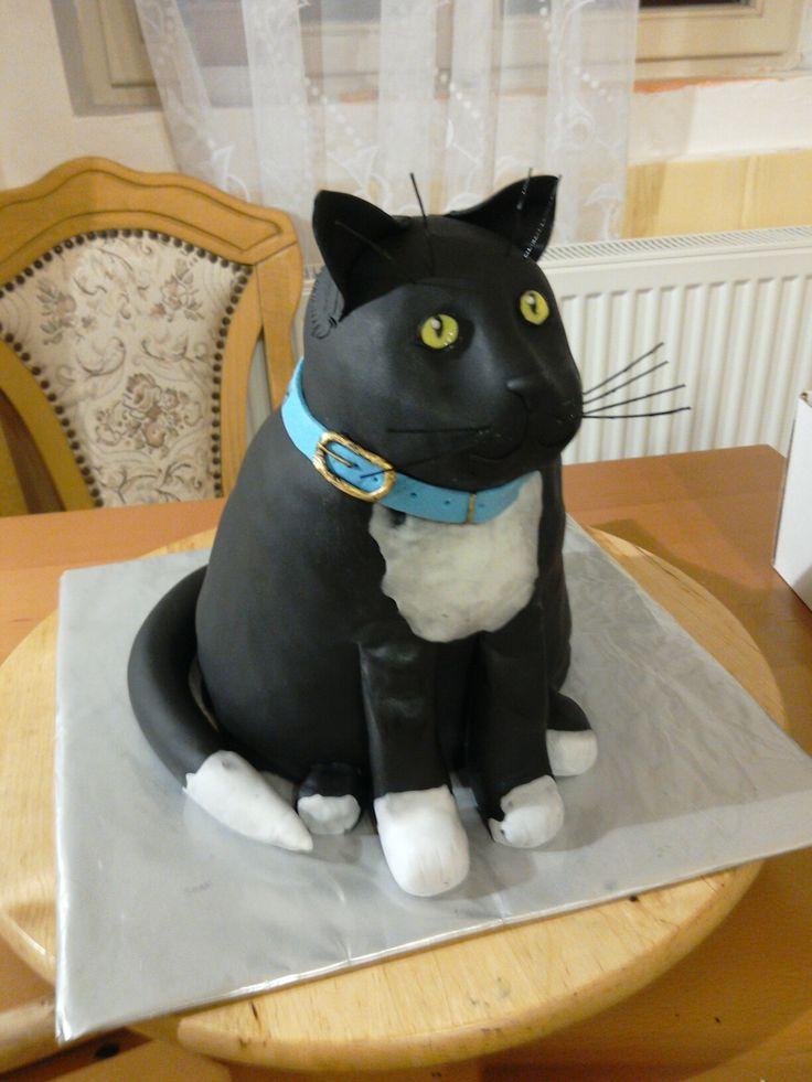 Kočka Tlusťoch
