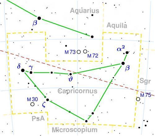 Stjernebilledet Stenbukken (Capricornus).