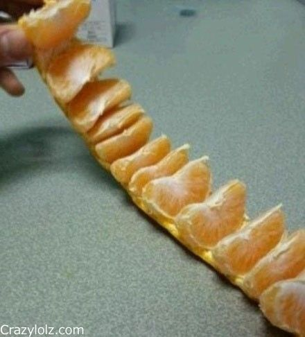 Peeling An Orange, Like A Boss. Cut or pull the top and bottom circles from the orange/tangerine. Then slit between two sections and roll it out.
