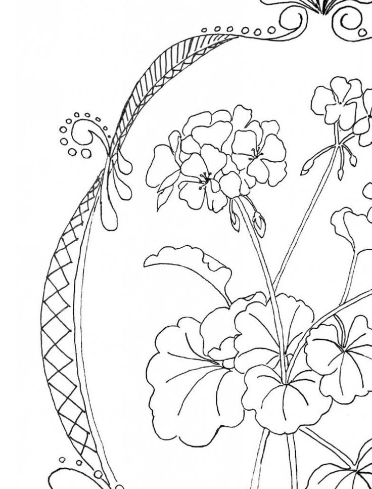 95 best Coloring Books for Grownups images on Pinterest  Adult