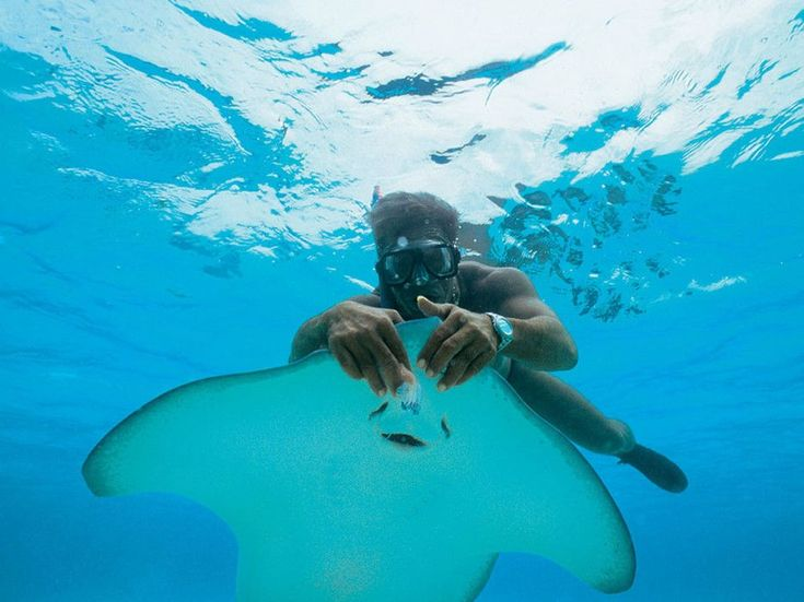 Yes, this could be you. Cruising the South Pacific year-round, Paul Gauguin not only offers scuba from the onboard marina but she also provides scuba lessons and even a PADI certification program.