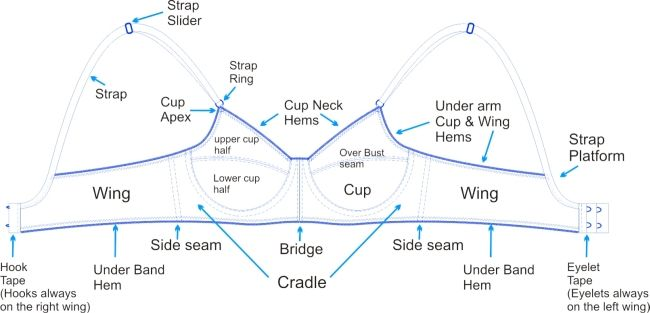 Parts of a Bra--awesome article on bras and bra sizing - from: http://www.foundationsrevealed.com/bra-making/161-bras-determining-your-size