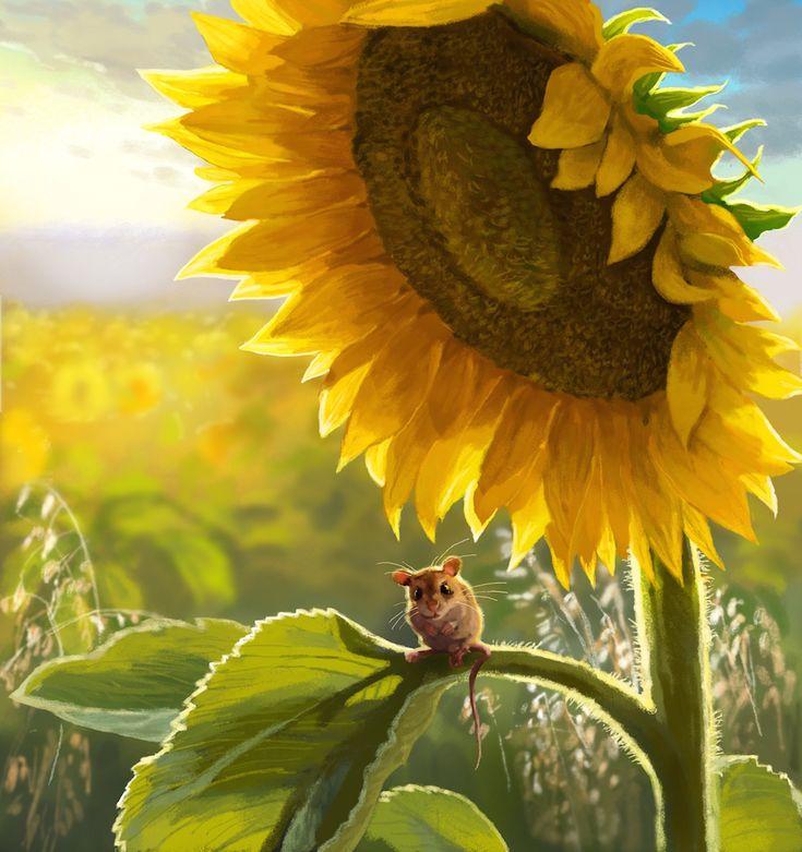 jeremy norton illustration little mouse in a sunflower field image tumblr illustrations. Black Bedroom Furniture Sets. Home Design Ideas