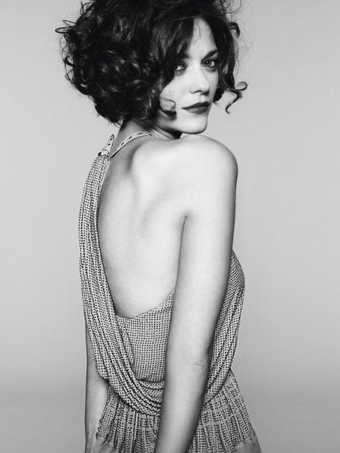 Marion Cotillard - short curly hair - if/when I cut my hair short, this will be it. love my long hair too much