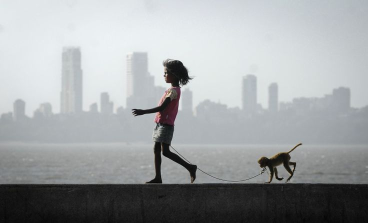 A girl walks with her pet monkey on a promenade along the Arabian Sea in Mumbai