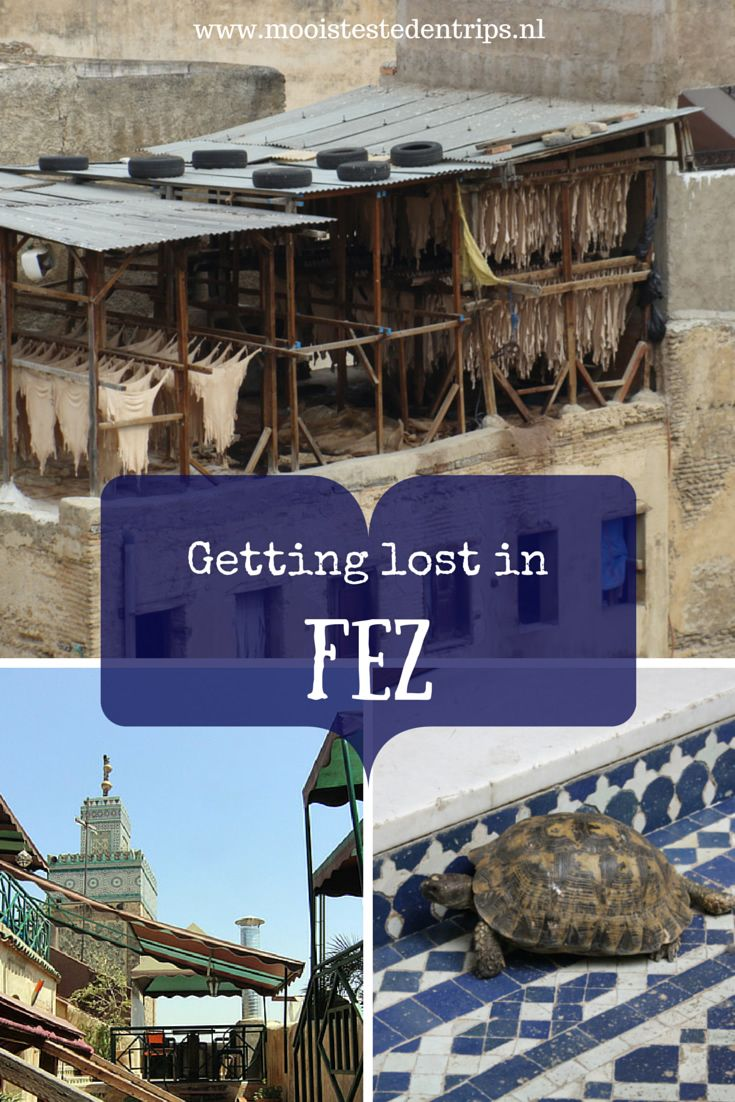 The best way to get to know Fez in Morocco? Just get lost :-)