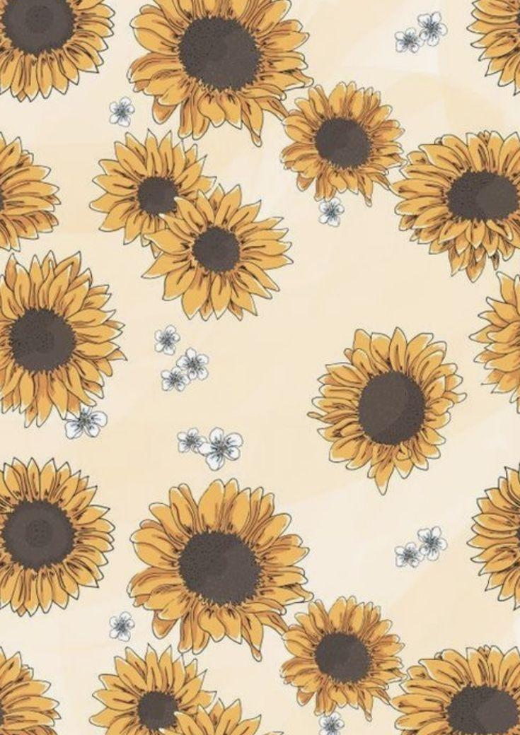 Cute Floral Computer Wallpaper Simple Sunflower Drawing Beautiful Flower Art Drawings