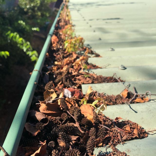 If your gutters look like this, then they are well overdue for a clean! Lucky this homeowner called Gutter-Vac Central West NSW in to service their gutters.
