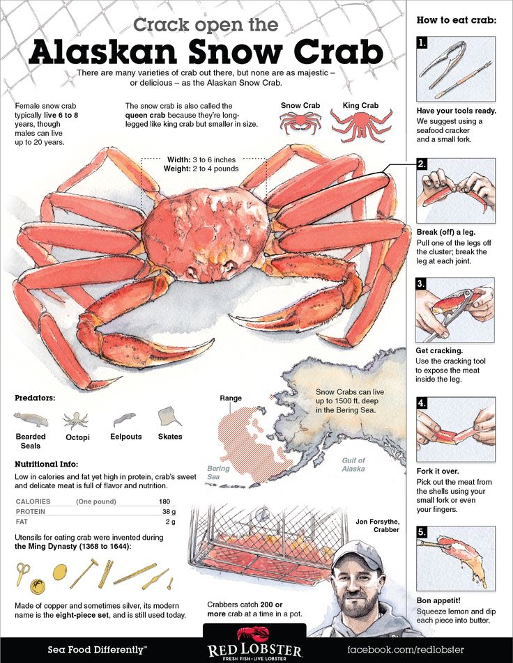 Nice infographic showing the origins of Alaskan Snow Crab and how to eat.