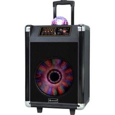 """12"""" Rechrgbl Bluetooth DJ Speaker Blk"""