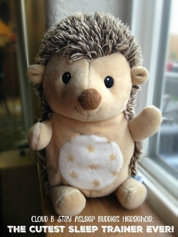 Looking for a fun, cuddly sleep trainer to help get your little one on a better schedule? The Cloud B Stay Asleep Buddies Hedgehog is the cutest one we've ever seen! I want one for myself! Reviewed on Pretty Opinionated, check it out!