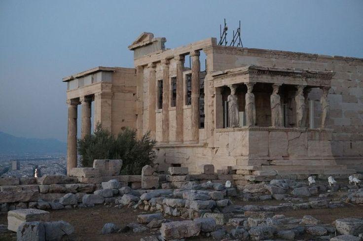 Athènes, la capitale de la Grèce est une ville dans laquelle les points d'intérêts sont très nombreux: une histoire riche, des magasins bien achalandés, un