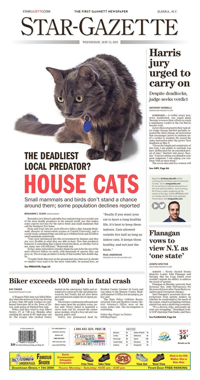 The Star-Gazette (Elmira, N.Y.) for May 13, 2015, via Today's Front Pages | Newseum #newsdesign #newspapers