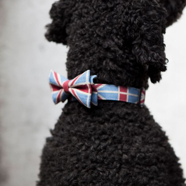 Union Jack Bow Tie M//