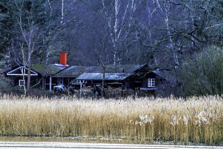Huset med udsigt til Brede sø