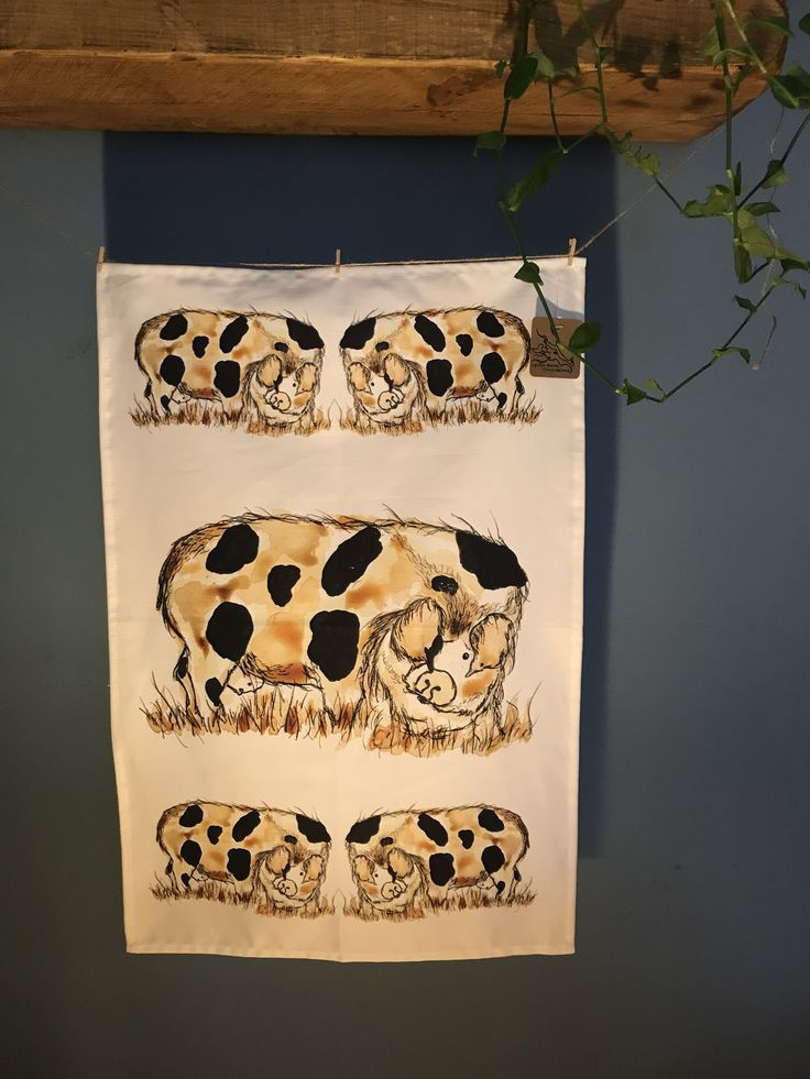 Country life 100% cotton tea towels. Gloucestershire Old Spot