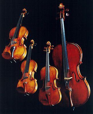 Vitamin String Quartet  Sunt niste oameni talentati, foarte talentati. Dar parerea mea sincera e ca muncesc si mult. Foarte mult.    www.corcodus.ro