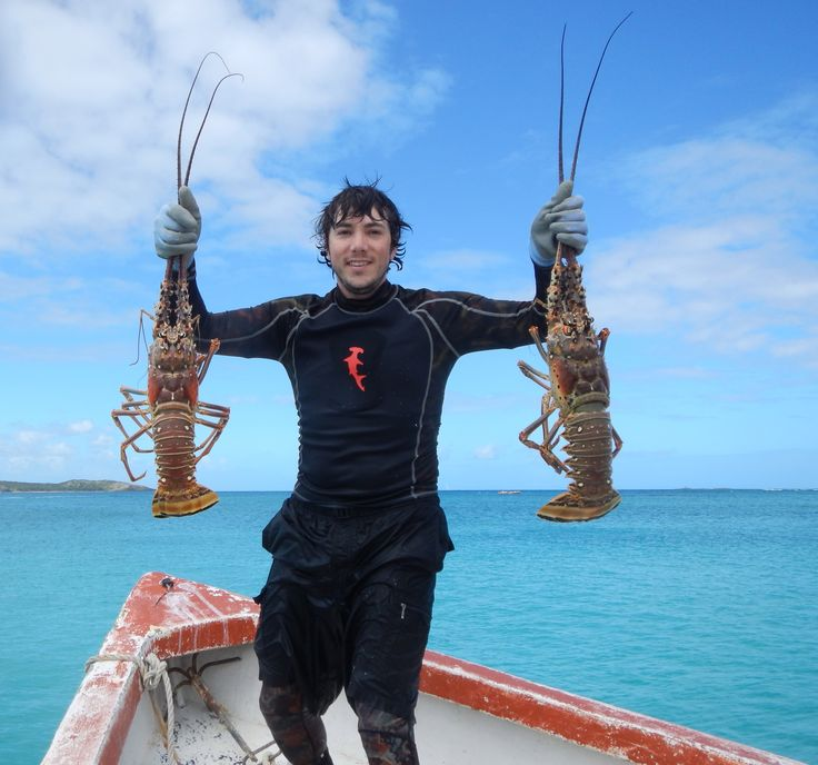 17 best images about puerto rico vacation helpers on for Lobster fishing san diego