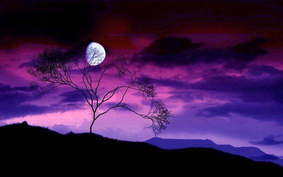 Purple Dream apk screenshot