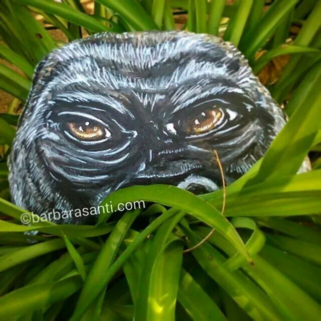 il #gorilla e gli altri componenti di #wild vi aspettano domenica 10 agosto dalle17alle 22,zona via mordini a #barga ..vi aspettiamo!!  ©barbarasanti.com