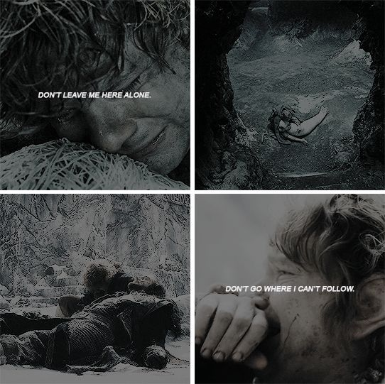 Don't leave me alone here. Don't go where I can't follow. #lotr