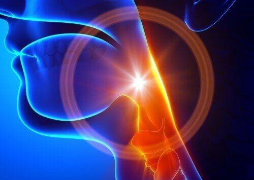 Hoesten is een veelvoorkomend ongemak gedurende het hele jaar. Dit symptoom kan de aanwezigheid van een hoop aandoeningen signaleren, zoals griep, allergieën, verkoudheid, longproblemen en meer. Het is een manier voor het lichaam om zich snel van schadelijke stoffen, die zich in het ademhalingskanaal bevinden, te ontdoen. Over het algemeen is hoesten oncomfortabel en creëert het ongemak in het hele lichaam, wat de situatie kan verslechten.