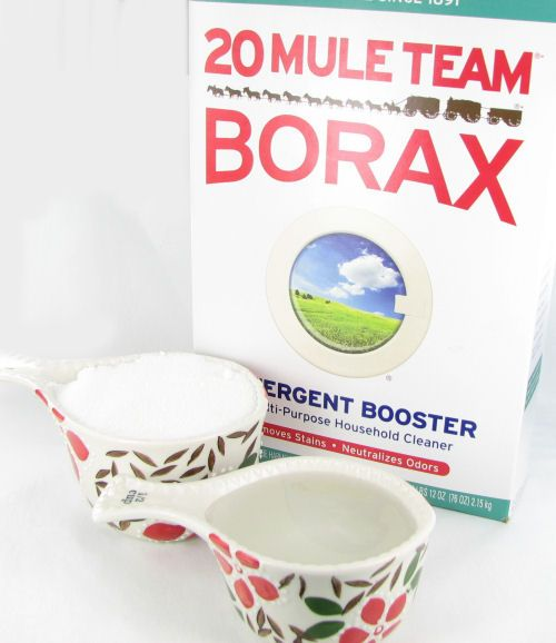Borax and Granulated Sugar to kill ants is a great alternative to the expensive brand Terro.  See the results of my testing  http://thegardeningcook.com/testing-borax-ant-killer-remedies/