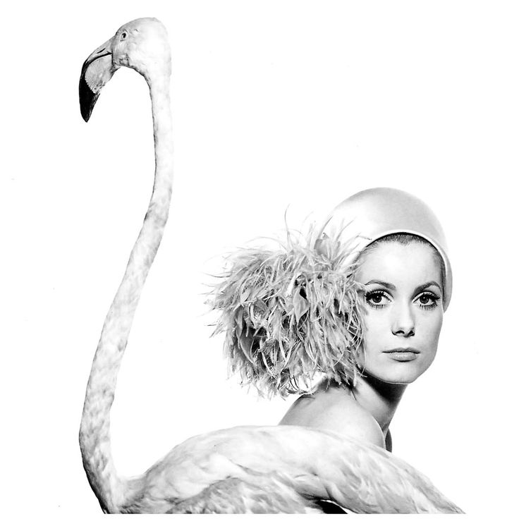 Catherine Deneuve, photo by David Bailey, taken Jan. 11, 1968 for Vogue