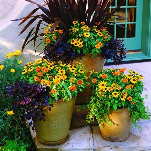 cool fall container flower ideas with photos