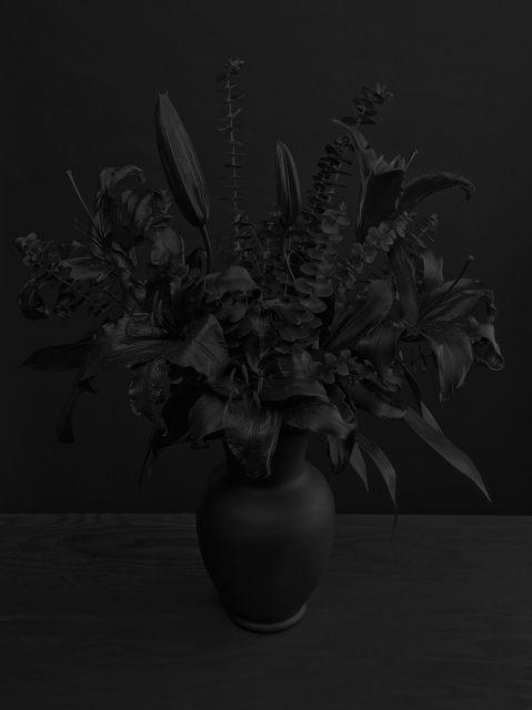 Des fleurs en noir sur fond noir pour des photos sombres