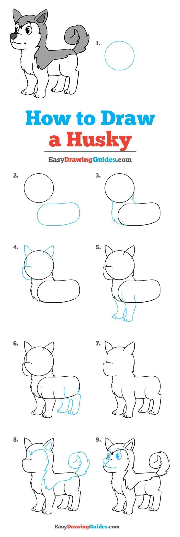 How To Draw A Husky Drawing Tutorial Easy Drawing Tutorials For Beginners Drawing Tutorial