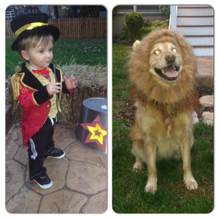 Best 20+ Lion tamer costume ideas on Pinterest ...
