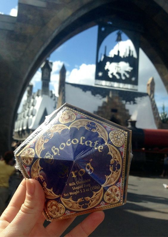 The Wizarding World of #HarryPotter is not a place to miss when visiting Universal in Orlando. If anything Diagon Alley and Hogsmeade should be at the top of your list. This magical wizarding world is the perfect place to get lost and unleash your inner wizard.