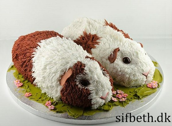 guinea pigs cake, how creative is that?!