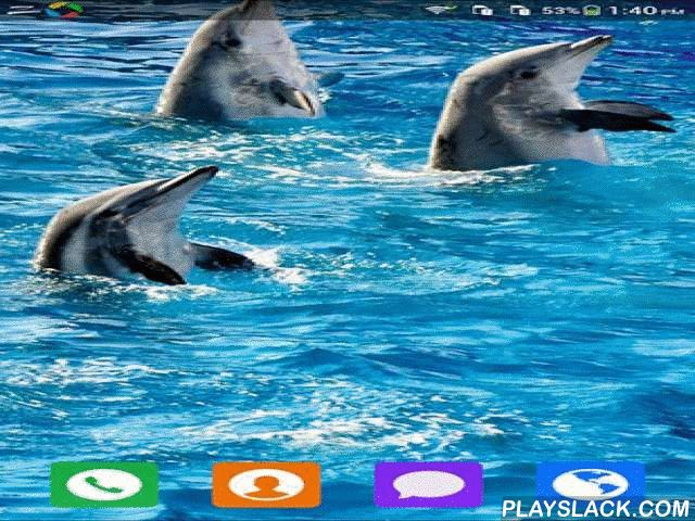 Lovely Dolphin  Android App - playslack.com , Lovely dolphin - live wallpapers with an unbelievable capital of attractive and kind dolphins. Give yourself a grin and fantastic feeling for the whole day! The app has easy-to-use settings.