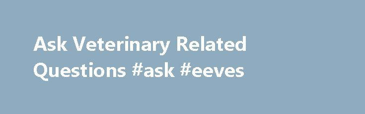 Ask Veterinary Related Questions #ask #eeves http://questions.remmont.com/ask-veterinary-related-questions-ask-eeves/  #ask veterinarian # AskVet 24 пользователя сейчас WHAT THIS SUB IS ABOUT This is a space in which current or prospective animal owners can ask questions and get advice from professionals within the veterinary community. All questions are allowed, including those that are not specifically about your pet (i.e. preparing for vet school, general animal...