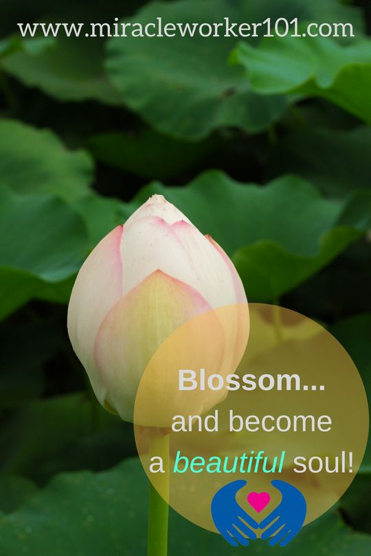You can grow to infinity, blossom in the light of God and walk the earth, but not be of it.
