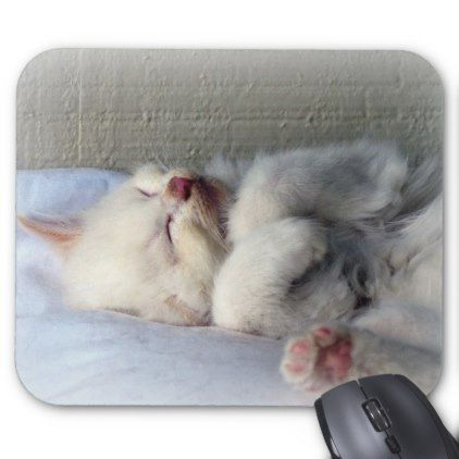 #Sleepy Kitten Mouse Pad - #office #gifts #giftideas #business