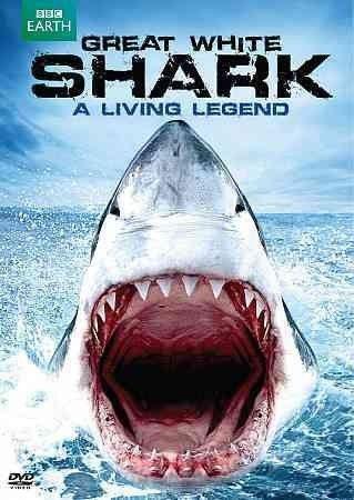 GREAT WHITE SHARK:LIVING LEGEND