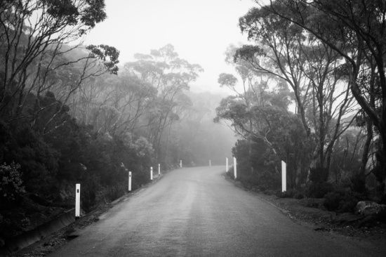 Mount Wellington Misty Road by Michelle McConnell Art Print