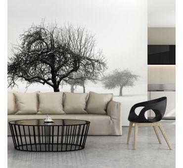 https://galeriaeuropa.eu/fototapety-las/8003524-fototapeta-zima-drzewa