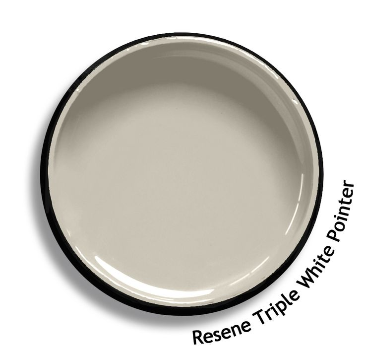 Resene Triple White Pointer is a mid toned brew of grey beige, dense and smooth. From the Resene Whites & Neutrals colour collection. Try a Resene testpot or view a physical sample at your Resene ColorShop or Reseller before making your final colour choice. www.resene.co.nz