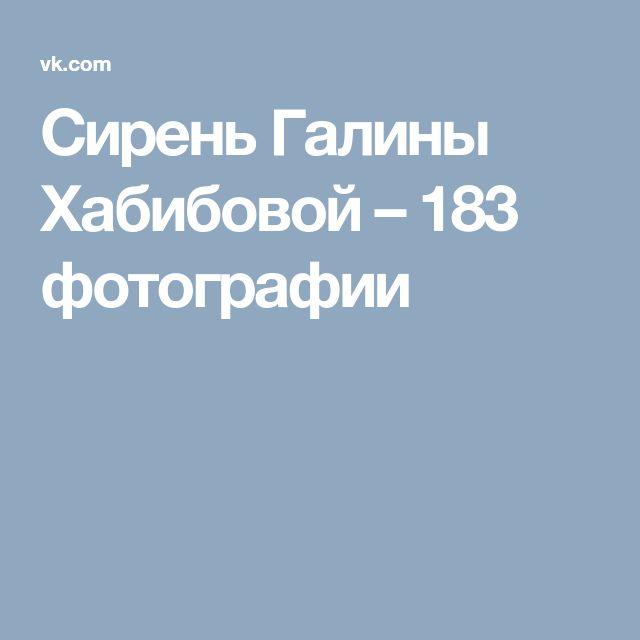 Сирень Галины Хабибовой – 183 фотографии