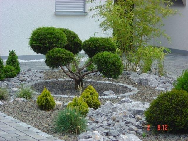 Die besten 25+ Vorgarten pflanzen Ideen auf Pinterest Vorgarten - baume fur den vorgarten