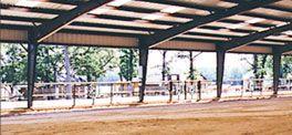 Steel Buildings   Metal Buildings   Rhino Steel Building Systems
