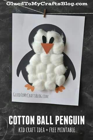Pinguino di cotone