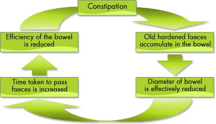 Constipation refers to the infrequent or difficult passing of stool. It is the most common digestive complaint yet, is treated as a symptom, and not a disease by itself. Constipation may be interpreted differently by different people. Some refer to it as infrequent bowel movement while for others it
