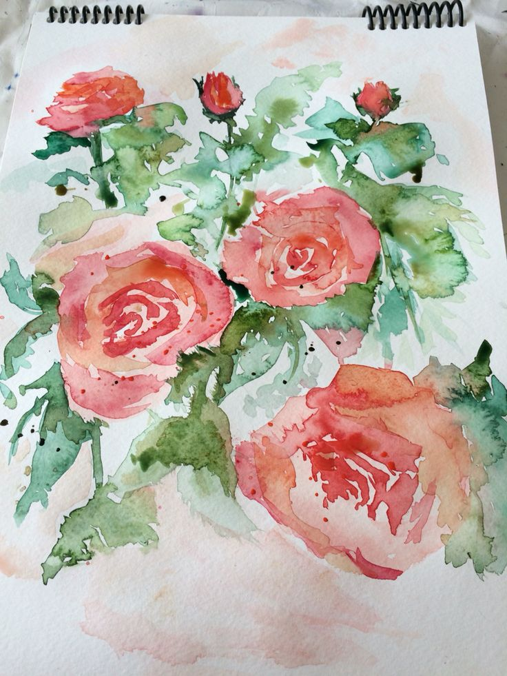 watercolour painting roses
